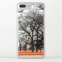 Park view at Belle isle in Detroit Clear iPhone Case