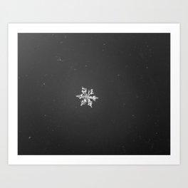 Snowflakes 2 Art Print