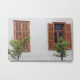 Two windows Metal Print