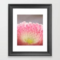 Winter flower. Framed Art Print