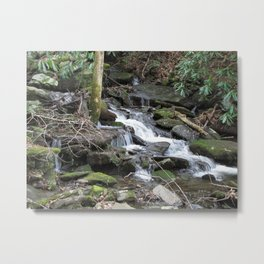 Trickles in the Woods Metal Print