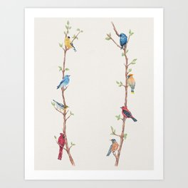 Bird Branches Art Print