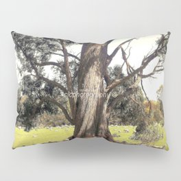 Under the shade of a Coolabah Tree Pillow Sham