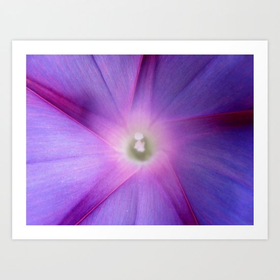 Star Violet Art Print