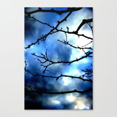 Storm Warning Canvas Print