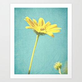 Daisy! Daisy! Art Print