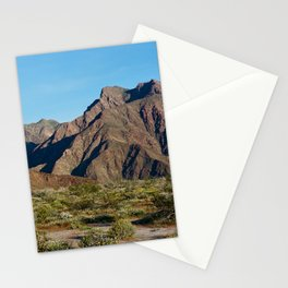 anza borrego superbloom 2 Stationery Cards