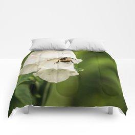 Bumblebee in the campanula Comforters