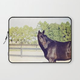 Bubba in Color Laptop Sleeve
