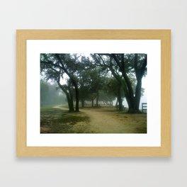 Foggy Day in Florida Framed Art Print