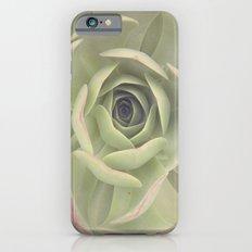 Iceplant  Slim Case iPhone 6s