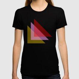 Sheer T-shirt