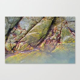 Compliments in Granite Canvas Print