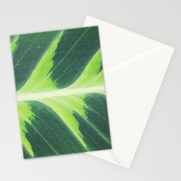 Leaf green Stationery Cards