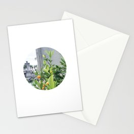 #106 — Life and Death — Paris Stationery Cards