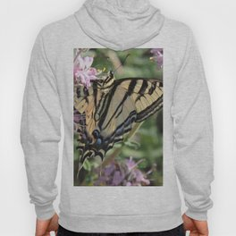 Western Tiger Swallowtail on Lemon Blossoms Hoody