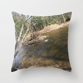 Beaver River Throw Pillow