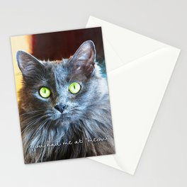 Fluffy grey cat close-up | You had me at meow Stationery Cards