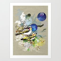 Yellow Birds Art Print