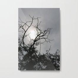 Silhouette Nightshine Metal Print