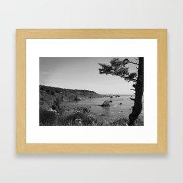 Patricks Point State Park Framed Art Print