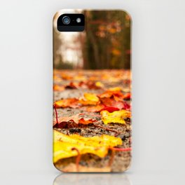 Fall on the Road iPhone Case