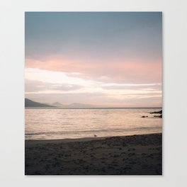 Coles Bay Sunset Seagull Canvas Print