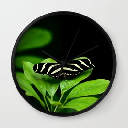 Zebra Longwing Butterfly on green leaves Wall Clock