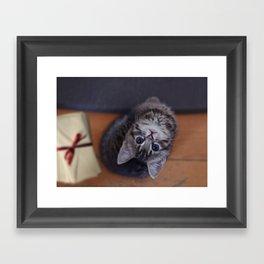 Mini meow! Framed Art Print