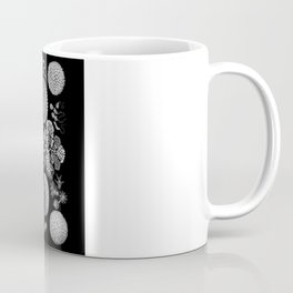 Slime Molds (Mycetozoa) by Ernst Haeckel Coffee Mug