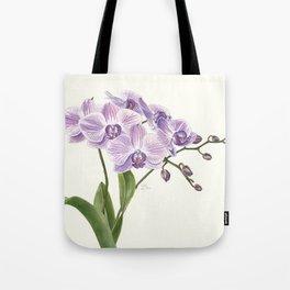 Purple phalaenopsis artwork Tote Bag