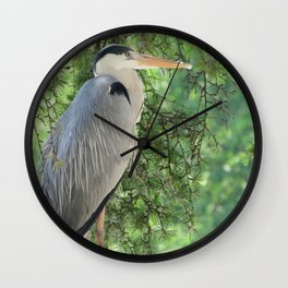 Grey heron (Ardea Cinerea) amongst trees Wall Clock