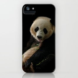 Giant Panda Sticking Out Her Tongue iPhone Case