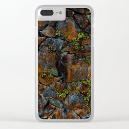 Mother of Thousands Clear iPhone Case