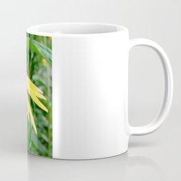 Yellow Echinacea/Coneflower Sideview Coffee Mug