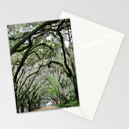 The Fountain of Youth 450th Year Celebration Stationery Cards
