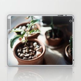 planter Laptop & iPad Skin