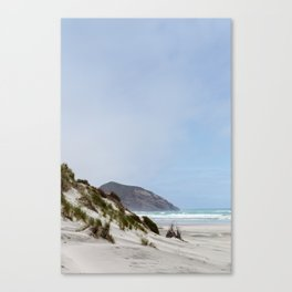 Wharariki Beach, NZ Canvas Print
