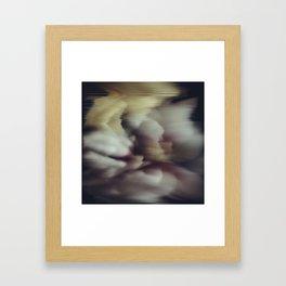 Blossom flower Framed Art Print