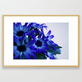 Blue Daze Framed Art Print