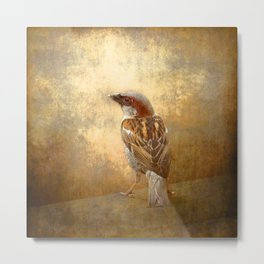 The little brown sparrow Metal Print