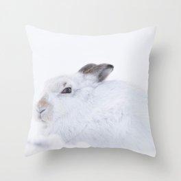 white mountain hare (lepus timidus) sitting on snow Throw Pillow