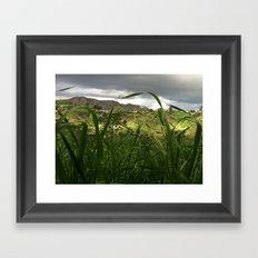 hollywood hills after rain Framed Art Print
