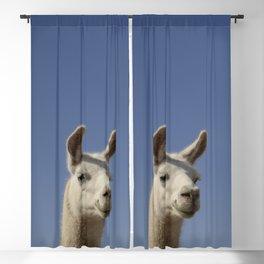 Lucy Llama Blackout Curtain