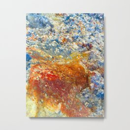 Rockfish Waterish Metal Print