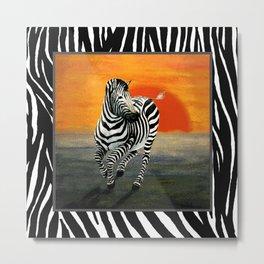 Zebra Galloping at Sunset Metal Print