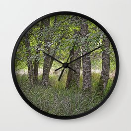 ALDER TREES NEARING THE END OF SUMMER ON ORCAS ISLAND Wall Clock
