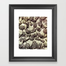 Shallow Waters Framed Art Print