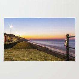 Saltburn in the evening light Rug