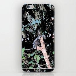 Common marmoset iPhone Skin